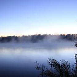 Morning Mist (JB Burger)